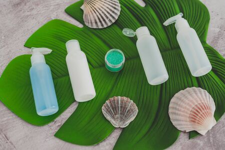 beauty industry concept: organic lotions and skincare products with tropical leaf in spa setting Banco de Imagens