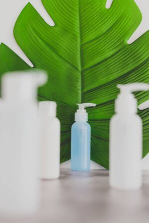 beauty industry concept: organic lotion isolated from a group of other skincare products with tropical leaf in the background Standard-Bild