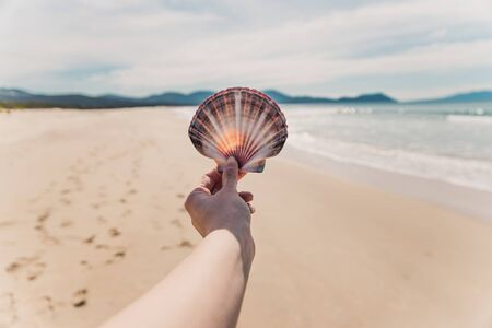 hand holding big colorful shell in front of pristine deserted beach bokeh, shot in Marion Bay Tasmania Australia