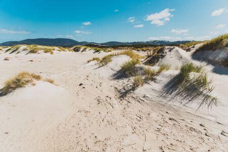 sand dunes along deserted beach in Marion Bay along the East Coast of Tasmania Australia