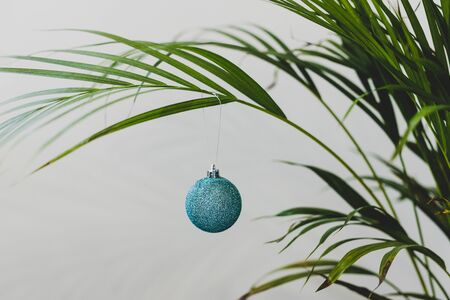 alternative Christmas tree conceptual still-life, palm tree with Christmas baubles as decoration for the festive season happening in summer for the Southern Hemisphere Stock Photo