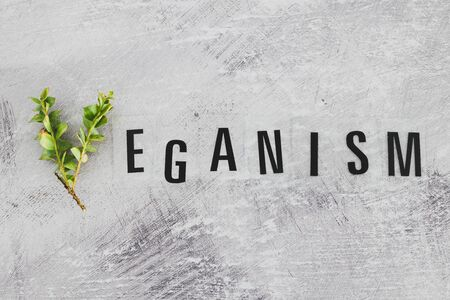 Vegan text with V made from small branches with leaves, concept of healthy plant-based diet and animal rights Banco de Imagens