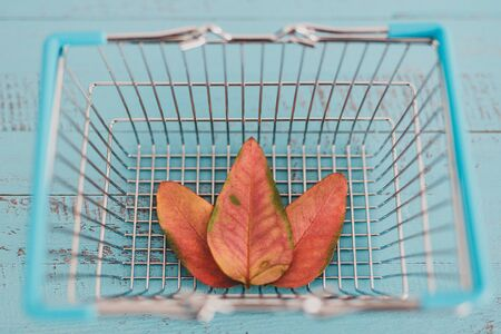 concept of choosing eco-friendly products, shopping basket with leaves Standard-Bild