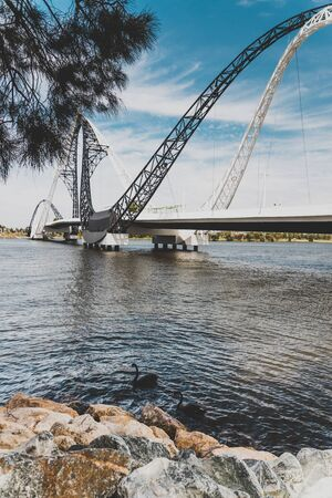 PERTH, WESTERN AUSTRALIA - December 26th, 2019: the Matagarup Bridge over the Swan River in Perth CBD with black swans in the water, symbol of the city