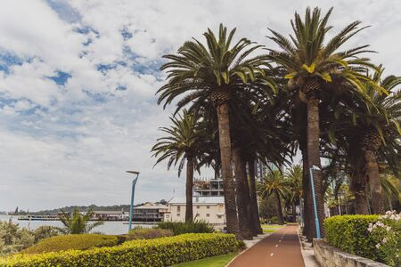 PERTH, AUSTRALIA - December 25th, 2019: Riverside pedestrian walk in Perth with palm trees next to the Swan River Editorial