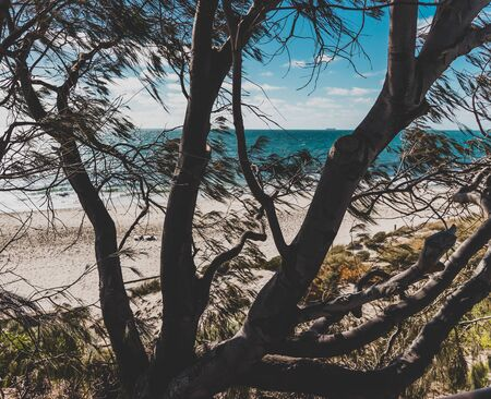 detail of Cottesloe Beach, one of the most iconic beahces near Perth, on a sunny summer day in Western Australia
