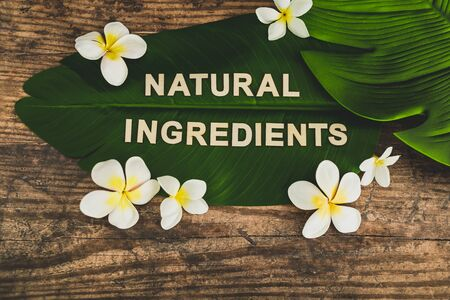 beauty industry and ethical vegan products conceptual still-life, Natural Ingredients message on tropical banana leaf with monoi frangipani flowers