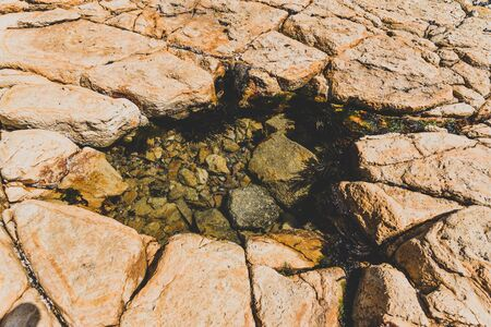 small natural rock pool with tiny fish swimming inside, shot on the shores of Opossum Bay in Tasmania