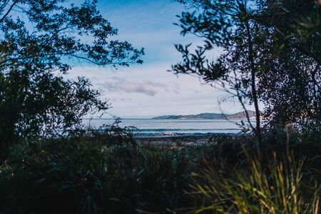 beautiful pristine Tasmanina beach with serene sky on a winter morning with tree branches framing the scenary Stock Photo - 148961976