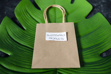 ecological choices and environmental awareness concept, paper bag with Susutainable Products label on it Banco de Imagens