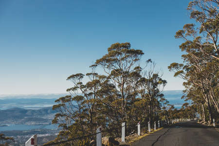 beautiful road surrounded by tall eucalyptus gum tree and Australian bush land while driving up Mount Wellington Kunanyi in Tasmania