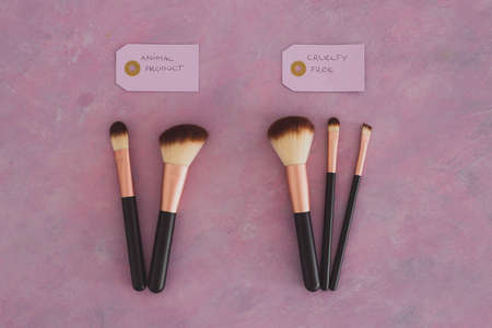 cruelty free vs animal products concept, sets of make up brushes with labels about synthetic vs animal fibers