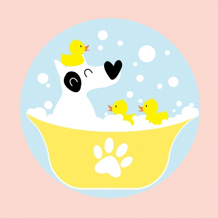dog bathing with rubber duck