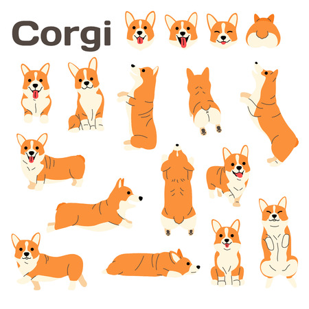 corgi illustration,dog poses,dog breed Banque d'images - 109564112