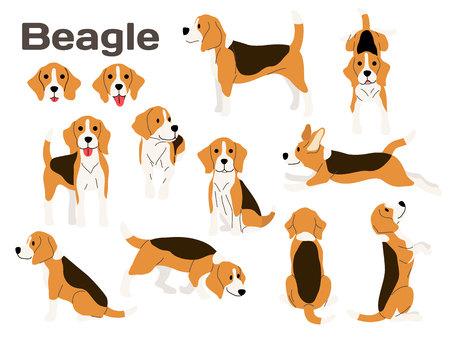 Ilustración de perro beagle, poses de perro