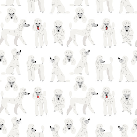 poodle pattern,dog poses,dog breed,seamless pattern background Ilustração
