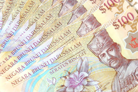 Close up view of Brunei Darussalam bank note. Brunei currency dollar. Stock Photo