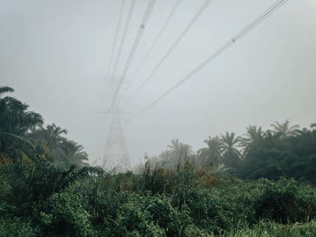 Electricity transmission pylon and a fog at the morning.