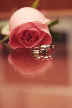 Wedding rings with rose background Stock Photo