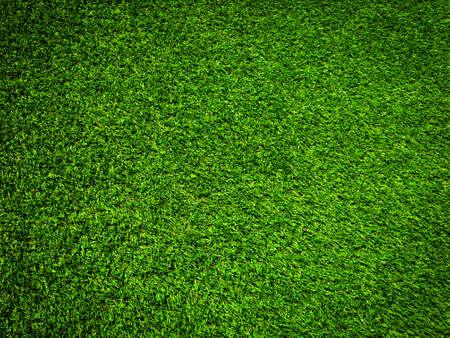 Fondo di struttura dell'erba verde della natura per il disegno. Concetto ecologico. Archivio Fotografico