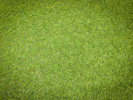 Fondo de textura de hierba verde de naturaleza para el diseño. Concepto ecológico. Foto de archivo