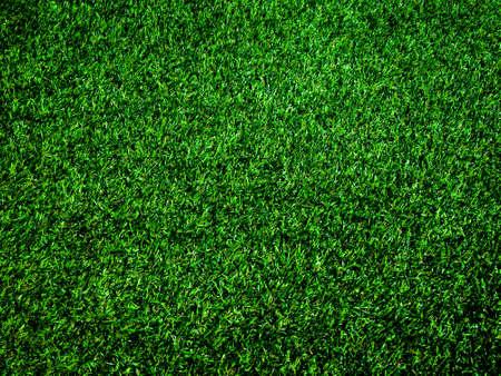 Vue de dessus du fond de texture d'herbe verte. Élément de conception.