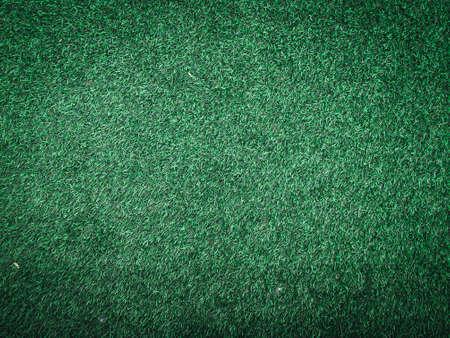 Vista ravvicinata dell'erba verde nella giungla con spazio di copia per il design