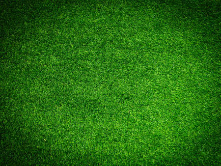 Artificial grass background for design, top view