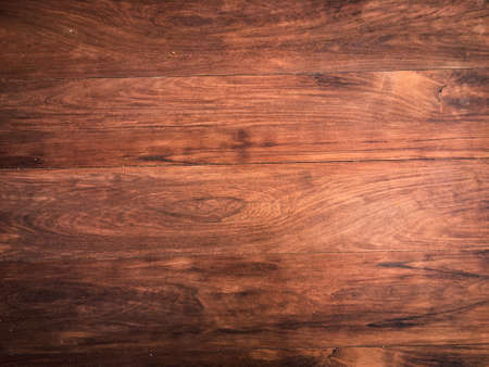 Wood texture background use as natural tree with space for design. Closeup view