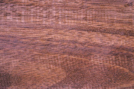 Timber wooden texture used to made backgrounds for your designs to be good and beautiful. Natural materials with unique patterns and versatility. High quality and easy conveniently for your work.