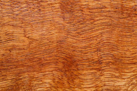 Natural pattern wood texture background copy space for your design or put on wallpaper banner billboard. High quality easy conveniently for your work. Horizontal composition with top view perspective