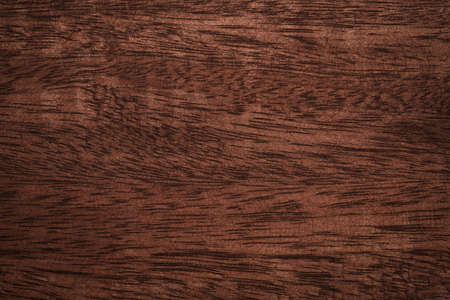 Wood scratched texture background High quality for work look better and attractive. copy space for your design or decoration. Horizontal composition with Surface patterns from natural