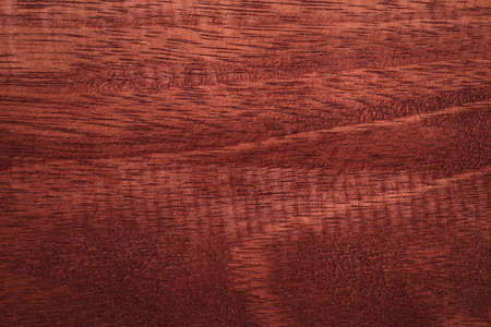 Light wooden texture background High quality for work look better and attractive. copy space for your design or decoration. Horizontal composition with Surface patterns from natural
