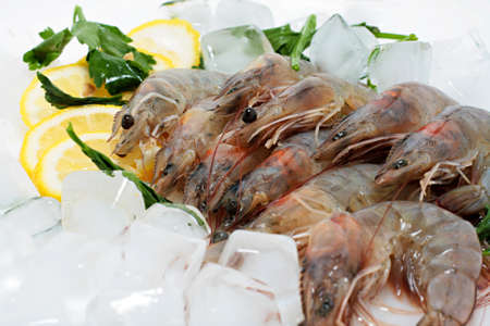 Fresh Prawn on Ice photo