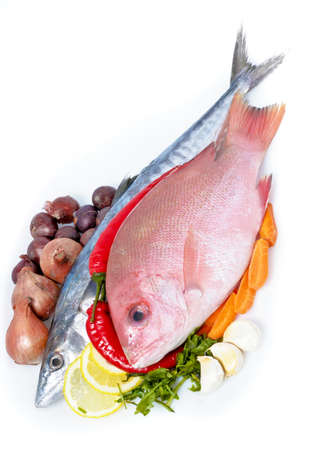 Fresh Sea Food (mackerel and red snapper) Stock Photo - 8525000