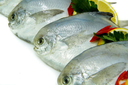 fresh water fish: Close-Up of Fresh White Pomfret with Lemon Stock Photo