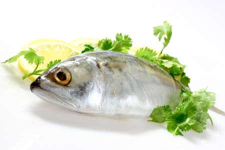 diminutive: Mackerel with Lemon