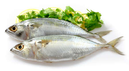 Mackerel with Lemon