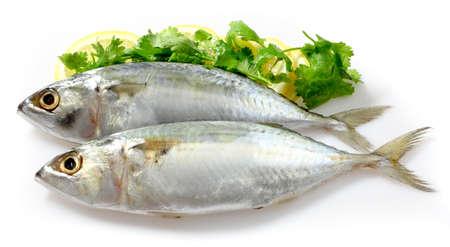 Makrele mit Zitrone