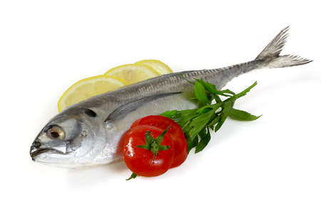 squids: Mackerel with Lemon and Tomatoes Stock Photo