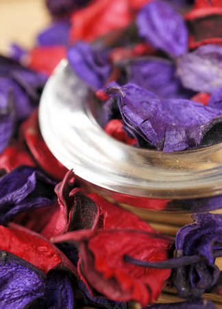 Red and Purple Dried Flowers Stock Photo - 13219308