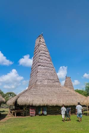 Traditional hut of Ratenggaro at Sumba, East Nusa Tenggara, Indonesia