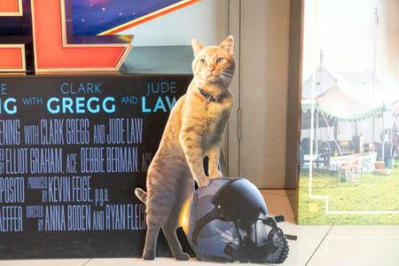 KUALA LUMPUR, MALAYSIA - APRIL 3, 2019: Close-up of Goose the cat from Captain Marvel