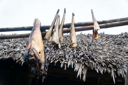 Dried meat from dolphin or whale at Lamalera, Nusa Tenggara, Indonesia. Lamalera is home of the Traditional Whale Hunting people Zdjęcie Seryjne