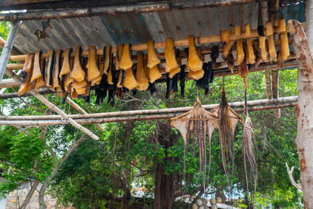 Dried sliced meat from Orca Killer whale at Lamalera, Nusa Tenggara, Indonesia. Lamalera is home of the Traditional Whale Hunting people