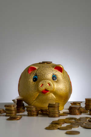 Finance concept, gold piggy bank with grey background Zdjęcie Seryjne