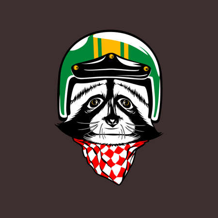 raccoon helmet illustration vectors