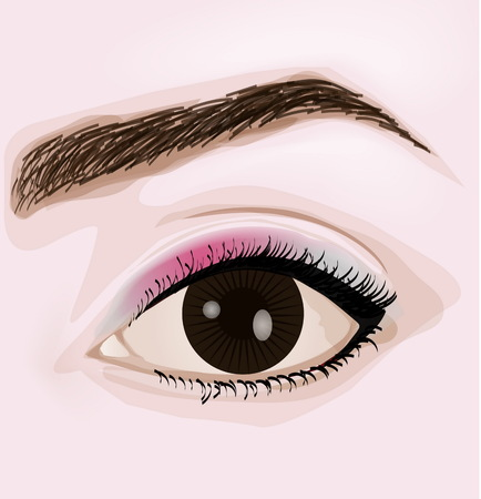 Woman brown eye with make-up vector