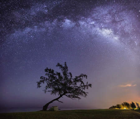 stargazing: The Lonely Tree and a Milkyway Stock Photo