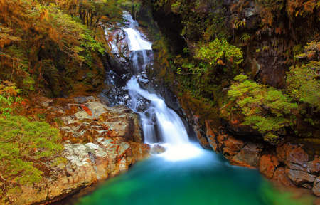 Falls Creek Waterfall, Fiordland, New Zealand photo